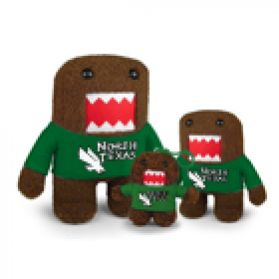 North Texas Domo