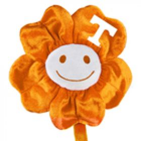 Tennessee Happy Flower  (20