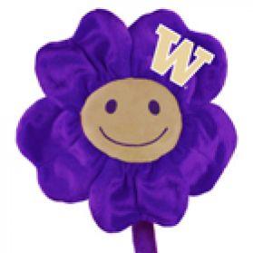 Washington Happy Flower  (20