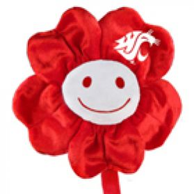 Washington State Happy Flower  (20