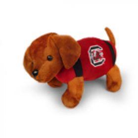 South Carolina Football Dog