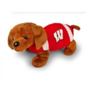 Wisconsin Football Dog