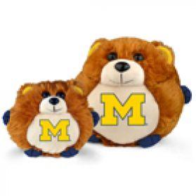 Michigan College Cub