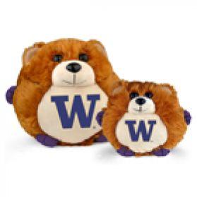 Washington College Cub