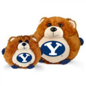BYU College Cub 11