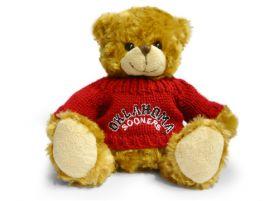 Oklahoma Sweater Bear