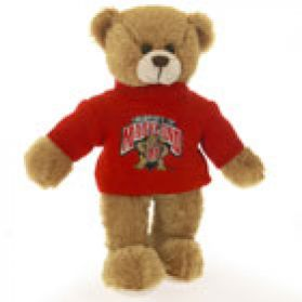 Maryland Sweater Bear 8in