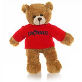 Cincinnati Sweater Bear
