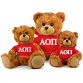 Alpha Omicron Pi Hoodie Bear