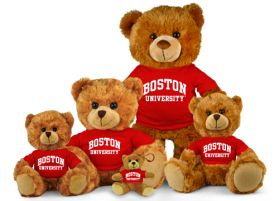 Boston University Jersey Bear
