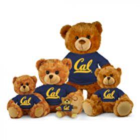 Cal Jersey Bear