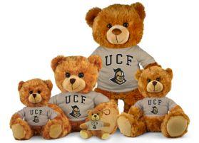 UCF Jersey Bear