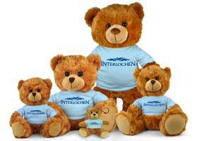 Interlochen Jersey Bear