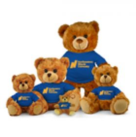 Northeastern Illinois Jersey Bear