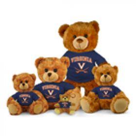 Virginia Jersey Bear
