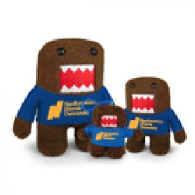 Northeastern Illinois Domo