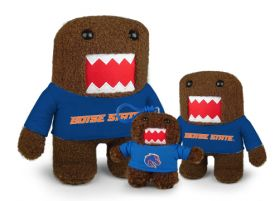 Boise State Domo