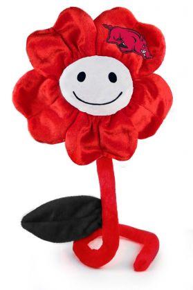 Arkansas Happy Flower (20