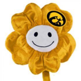 Iowa Happy Flower  (20
