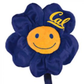 Cal Happy Flower  (20