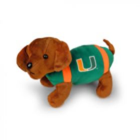 Miami Football Dog 11in