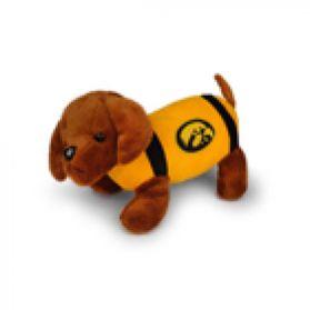 Iowa Football Dog