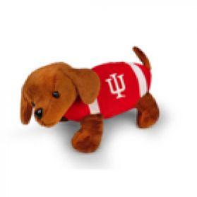 Indiana Football Dog