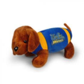 UCLA Football Dog
