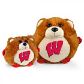 Wisconsin College Cub