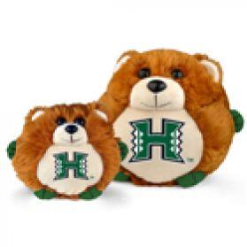 Hawaii College Cub