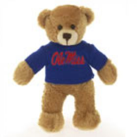 Mississippi Sweater Bear