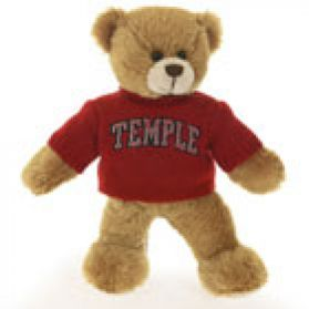 Temple Sweater Bear