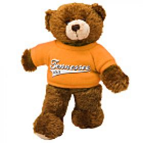 Tennessee Baseball Shirt Bear