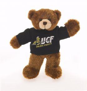 Central Florida Sweater Bear