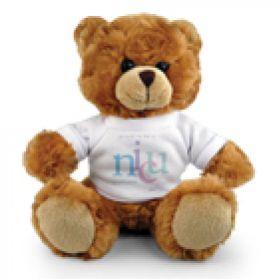 NICU Fluffy Bear