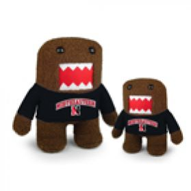 Northeastern Domo