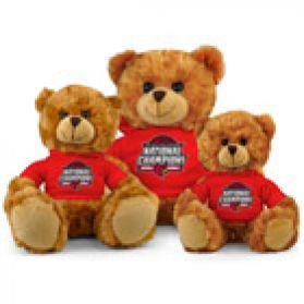 2013 Louisville Champ Hoodie Bear