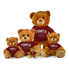Temple Jersey Bear