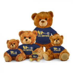 UC Irvine Jersey Bear