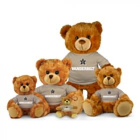 Vanderbilt Jersey Bear